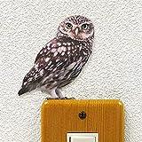 ウォールステッカー BIRD LIFE Color 「コキンメフクロウ(右向き)」