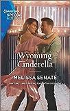 Wyoming Cinderella (Dawson Family Ranch Book 5) (English Edition)