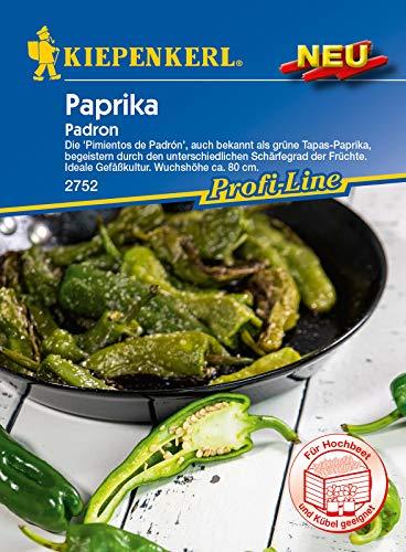 Paprika (Bratpaprika), Pimientos de Padron auch bekannt als grüne Tapas-Paprika, Gewächshaus und Freiland geeignet