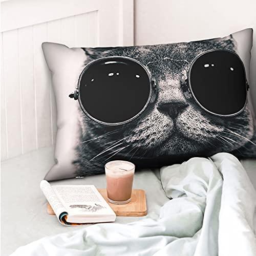 VVSADEB Funda de almohada para gafas de gato, 20 pulgadas x 30 pulgadas, funda de almohada con cremallera, suave y acogedor, arrugas, tamaño estándar, 1 paquete