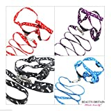 12 x <span class='highlight'>PET</span> LEAD COLLAR ADJUSTABLE DOG 4 DIFFERENT COLOURS <span class='highlight'>WHOLESALE</span> <span class='highlight'>UK</span> (12 pcs)