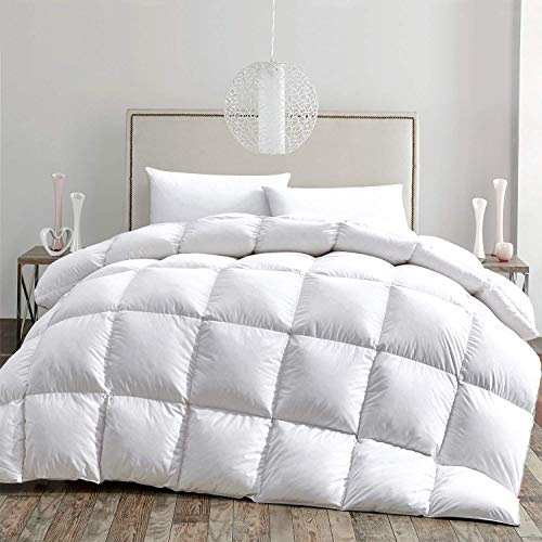HOMBYS Luxurious Goose Down Comforter 120'x98' Oversized/Palatial King Duvet Insert All Season 100% Cotton Cover Down Proof with 8 Corner Tabs Feather Down Comforter, 81oz Fill Weight