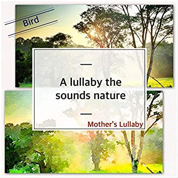 (Bird)_A lullaby the sounds nature (Bird)