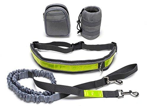 Correa elástica para correr o caminar con el perro, con cinturón...