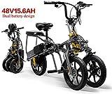 XINTONGDA 2 Batteries Voiture électrique 48V 15.6A Pliant Tricycle électrique Tricycle 14 Pouces 1...