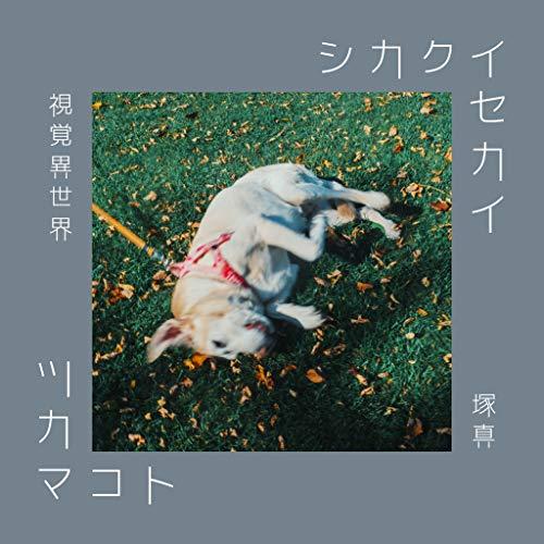 シカクイセカイ Vol.1