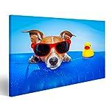 islandburner Bild Bilder auf Leinwand Jack Russell Hund auf Einer Matratze im Ozean Wasser am Strand, genießen Sommerurlaub Urlaub, mit roten Sonnenbrillen mit gelben Kunststoff Gu