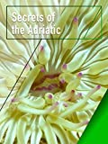 Secrets of the Adriatic