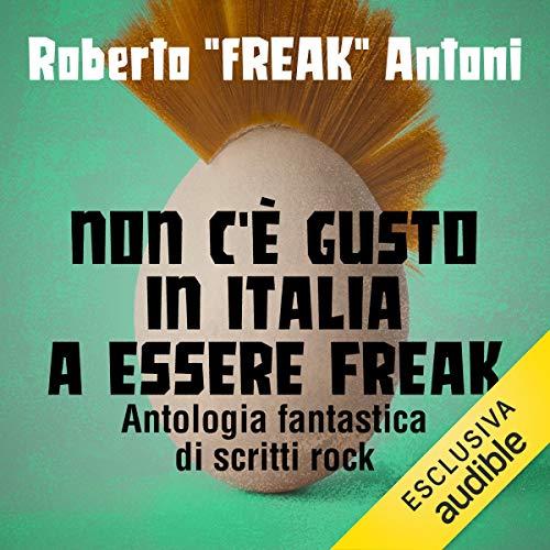 Non c'è gusto in Italia a essere Freak: Antologia fantastica di scritti rock