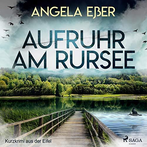 Aufruhr am Rursee audiobook cover art