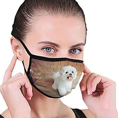 Maltese Dog Mouth Mask Health Face Cover Reusable Outdoor Masks