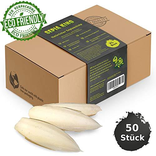 Sepia-King®Sepiaschalen – ECO XL Box 50 Stück | Natürliche Kalzium und Mineralstoff-Quelle | Sepia Schalen - Futter für Reptilien, Schildkröten, Bartagame, Vögel | Terrarium Zubehör