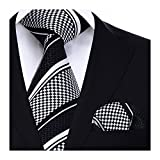 HISDERN Matrimonio a righe Cravatta Fazzoletto Cravatta da uomo & Pocket Square Set
