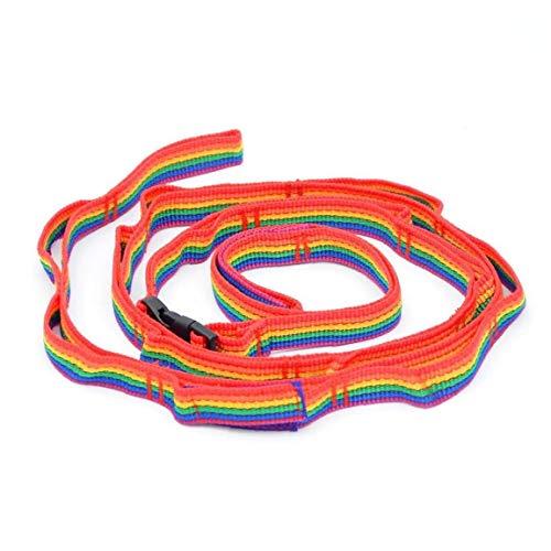 LAANCOO Colorido Carpa Cuerda, acampan línea de Ropa Que cuelga de Protable Reutilizable al Aire Libre Que va de excursión para Picnic Patio
