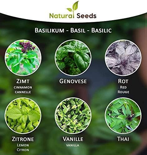6 x 250 Basilikumsamen/Samen für Basilikum Pflanzen Saatgut Kräutersamen aus Portugal Premiumsamen