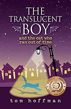 The Translucent Boy and the Cat Who Ran Out of Time