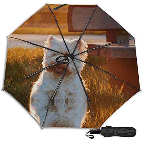 Cute Dog Mescchsk防風二重層通気性トラベル傘、防水コーティング生地、持ち運びと旅行が簡単。