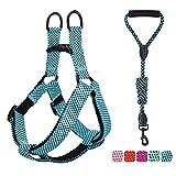 Pawaboo Kit de Correa y Arnés para Perro, Ajustable Cuerda y Arnés del Chaleco para Cachorro para Entrenamiento pasear Correr con su Mascota, Talla L - Azul