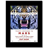 Mini-Poster 30 Seconds to Mars – This is War Matted –