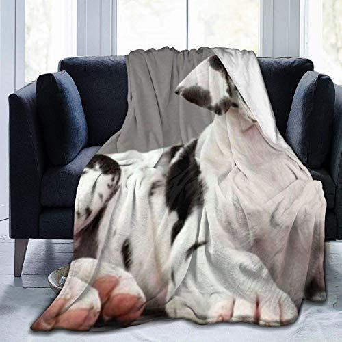 Manta de Microfibra Ultra Suave, Mantas acogedoras con Borde Cosido con Animales de Perro Gran danés, Alfombra térmica portátil de Felpa para sofá Cama