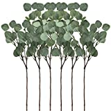 Supla 6 Pcs Artificial Silver Dollar Eucalyptus Leaf Spray in Green 25.5' Tall Artificial Greenery Holiday Greens Christmas Greenery