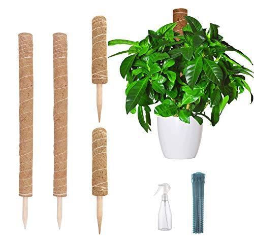 Pflanzstab Kokos (2 Stück 60cm)Und (2 Stück 40cm) verlängerbar natürlicher Kokosfaser Pflanzenhalter Für Haus Garten Kletterpflanze Erweiterung Der Pflanzenstütze