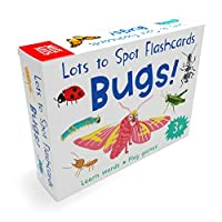 Lots to Spot Flashcards: Bugs!