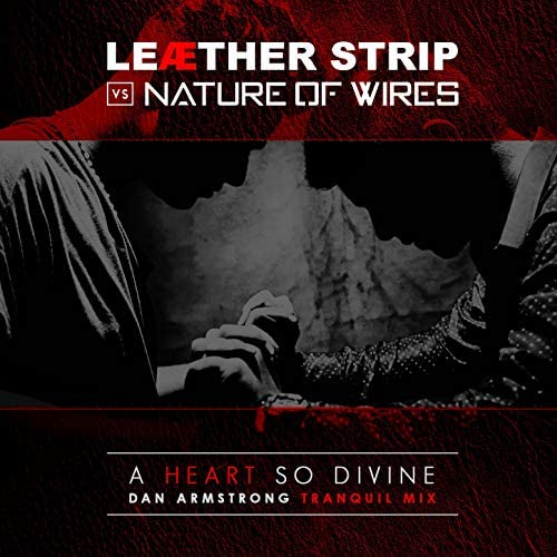 Nature of Wires & Leaether Strip