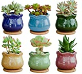 Lawei 6 Pack Ice Crack Plant Pot - 3.7 inch Succulent Pots Cactus Plant Pot with Bamboo Trays for Home Garden Office Decoration