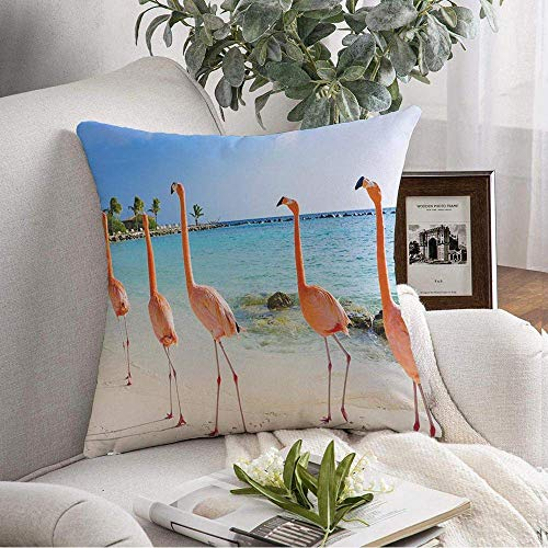 N\A Throw Pillow Cover Lots Free Flamingo On Beach Elegant Sand Sky Exotic Aruba Island Summer Parks Outdoor Tropics Palm Decorative Pillows Cover for Couch Sofa Bedroom Car Bedding
