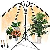 Pflanzenlampe LED mit Ständer, Wachstumslampe Tripod Einstellbar, Pflanzenlampen, semai 80W Pflanzenleuchte Vollspektrum,...