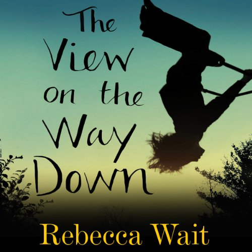 The View on the Way Down audiobook cover art