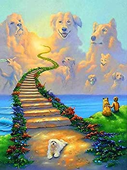 TheShai 5D Full Drill Diamond Painting Dog Cloud Heaven Paint with Diamonds Art for Home Wall Decor DIY Painting by Number Kits  30x40cm  12x16inch a1151