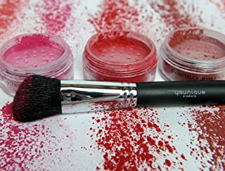 Best younique blush brush Reviews