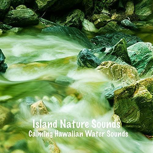 Island Nature Sounds