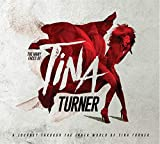 The Many Faces of Tina Turner: A Journey Through the Inner World of Tina Turner von Tina Turner