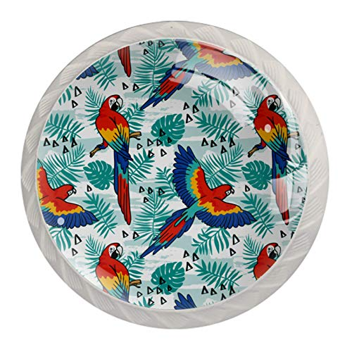 2021 Drawer Handle Knobs for Cabinets, Wardrobes, Bedside TablesTropical Parrot Birds Palm Pattern