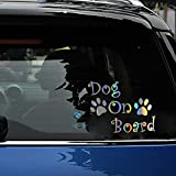 2 Unds. Vinilo adhesivo arcoiris Perro a bordo ¡¡ para decoracion coches, caravanas, motos, exterior e interior cabado perfecto multitud de usos alta calidad de CHPYHOME