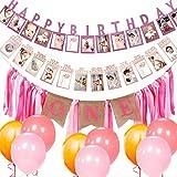 1er Photo Bannière Bébé Anniversaire Guirlande de Banderoles, Allazone1-12 Mois Photo Prop Party Bunting Décor et des Ballons (Rose)
