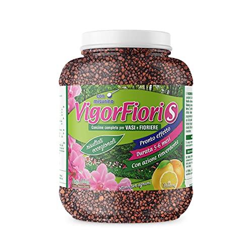 VIGORFIORI S, concime granulare completo con pronto effetto, lunga durata e ferro altamente rinverdente per piante e fiori, kg 1,3, Vitaverde