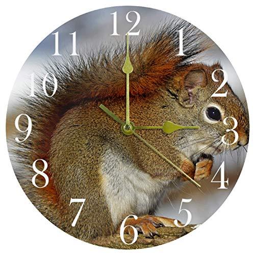 TIKISMILE Reloj de pared de roedor de ardilla roja silencioso, acrílico decorativo para oficina, escuela, sala de estar, dormitorio, decoración del hogar