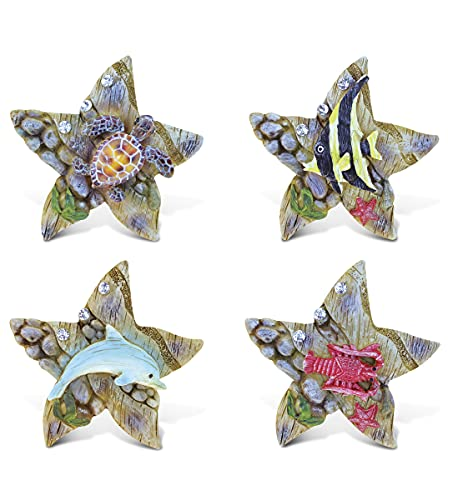 CoTa Global Sea Star Refrigerator Rockstone Magnets Set of 4 - Assorted Resin Beach Design, Fun & Cute Ocean Animal Magnets For Kitchen Fridge, Locker, Home Decor & Office Decor Novelty - 4 Pack