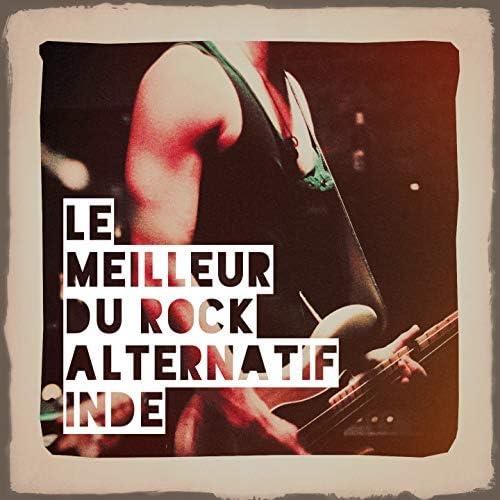 Le son du rock indé américain, Indie Rock Music
