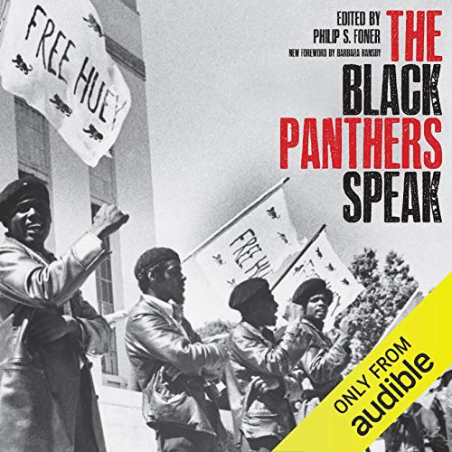 The Black Panthers Speak audiobook cover art