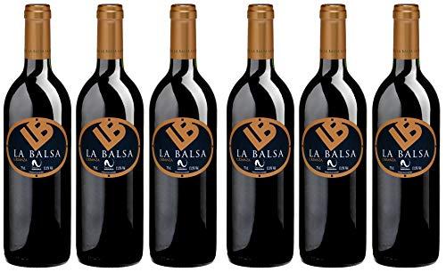 Bio Wein Rotwein Trocken Cabernet Sauvignon Tempranillo Spanien Navarra 2015 Barrique Vegan Histaminarm Säurearm (6 x 0,75l)