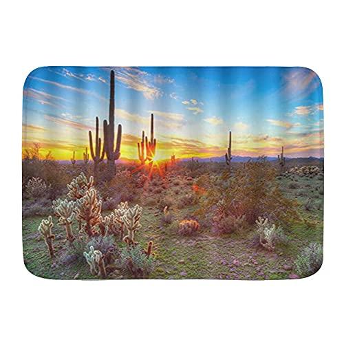 FOURFOOL Alfombrilla de Baño de Microfibra,Cactus Ecosistema Del Desierto Floreciendo Hermosas Plantas Hierba Flores,Alfombra Baño Absorbente y Antideslizante Suave Alfombra de Ducha Lavable a Máquina