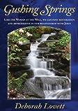 Gushing Springs (English Edition)