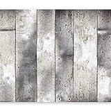 murando Fotomurales Abstracto 400x280 cm XXL Papel pintado tejido no tejido Decoración de Pared decorativos Murales moderna Diseno Fotográfico Hormigon pared f-a-0139-a-b