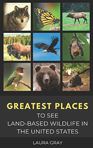 GREATEST PLACES TO SEE LAND-BASED WILDLIFE IN THE UNITED STATES: Bats, Bears, Bison, California Condor, Eagle, Elk, Humming Bird, Monarch Butterfly, ... Synchronous Fireflies, Wild Horses, & Wolves,