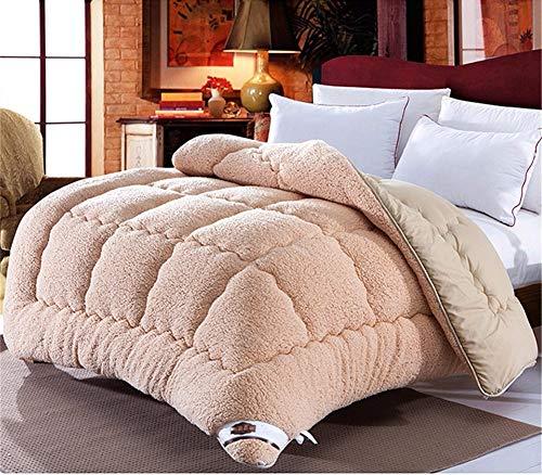 WanJiaMen'Shop Edredón de Lana de Invierno cálido, Grueso, edredón/Manta de Cordero, Ropa de Cama, marrón, 150 x 200 cm, 2.5 kg